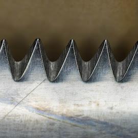 knife by Þröstur Njáls - Abstract Macro ( macro, iceland, d600, nikon, knife )