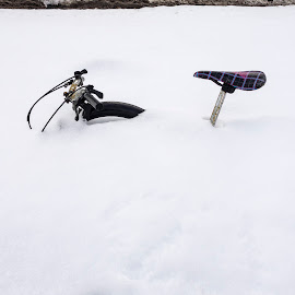 Bicycle in the Snow by David Stone - Transportation Bicycles ( bike, winter, boston, snowbank, snow, bicycle seat, bicycle )