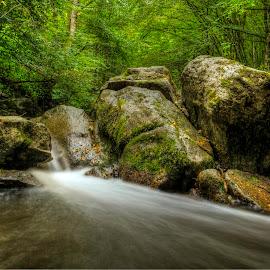 Green rocks by Siniša Biljan - Nature Up Close Rock & Stone