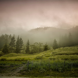 Rodopi by Ева Йорданова - Landscapes Mountains & Hills ( mountain, village, meadow, misty morning,  )
