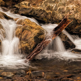 Rocky Mountain stream by Lowell Griffith - Nature Up Close Rock & Stone ( stream, rocky mountains, rocks, whitewater )