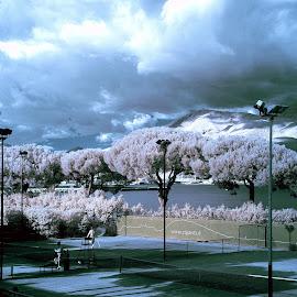 Gaeta Italy by Giuseppe Ciaramaglia - City,  Street & Park  City Parks ( infrared, vista, gaeta )