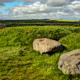 Knowth by Pat Eisenberger - Landscapes Prairies, Meadows & Fields ( field, ireland, meadow, knowth, spring, rocks )