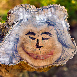 A Face in the Park by Jose Matutina - City,  Street & Park  Street Scenes ( grafitti, face, stump, tree, wood,  )