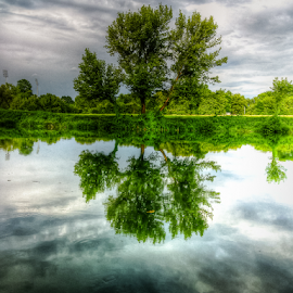 River Korana by Oliver Švob - Landscapes Waterscapes ( clouds, water, korana, reflection, nature, tree, croatia, river,  )