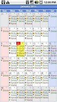 Screenshot of iRT Calendar