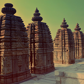 Batesar Temples by Gopal Raj - Buildings & Architecture Places of Worship ( history, place of worship, india, architecture, public )