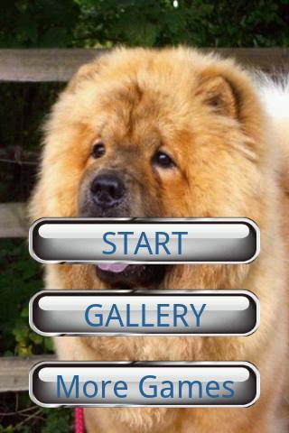 狗狗拼圖:鬆獅犬