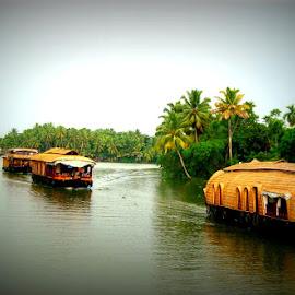 Backwaters of Kerala by Ami Bhat - Transportation Boats ( backwaters, backwater, houseboats, boats, alleypey, kerala, kumarakom )