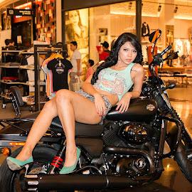 Bee Viona on Black Harley Davidson 3 by Sucipto Darmaputra - People Fashion ( harley davidson, sexy, model, motorbike, woman )