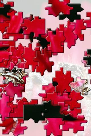 【免費解謎App】Flamingo Jigsaw Puzzle-APP點子