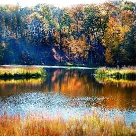 Tranquility of Nature by Jennifer Schmidt - Landscapes Prairies, Meadows & Fields ( minnesota fall, bright fall colors, fall colors, autumn day, ending of fall, fall, color, colorful, nature )