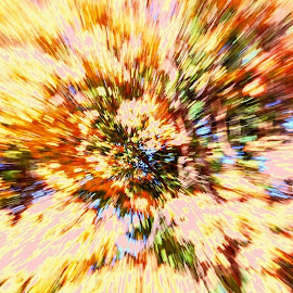 Autumn Foliage Zoom by Steve Munford - Abstract Light Painting ( abstract, sabot, foliage, zoom, colors )