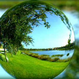 Fish Bowl View by Elfie Back - Artistic Objects Glass ( glass, sphere, globe, lake view )