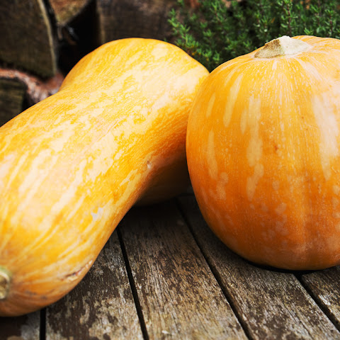 Barley Pumpkin Risotto With a Hint of Emilia-Romagna Recipe   Yummly