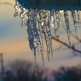 Icicles are Forming  by Greg Sommer - News & Events Weather & Storms