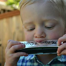 Harmonica  by Tristen Leck - Babies & Children Children Candids ( boy,  )