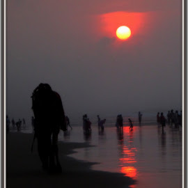 The Red Horizon by শাশ্বত দাশগুপ্ত - Nature Up Close Sand ( camel, reflection, sky, red, sea )