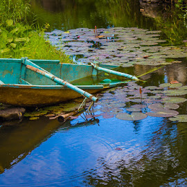 Outriggered by Anj GoNon - Transportation Boats ( water, lotus, lotus leaves, lotus bud, blue and yellow boat, plants, sunken boat, outrigger, boat, lotus flower )
