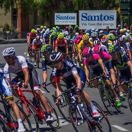 Adelaide TDU 1 by Sean Heatley - Sports & Fitness Cycling ( sean heatley photography, south australia, australia, tdu, adelaide, public, race, bicycle, colorful, mood factory, vibrant, happiness, January, moods, emotions, inspiration )