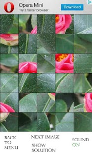 Photo Puzzle - Flowers (free) - screenshot