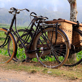by Ismanto Lungsi - Transportation Bicycles