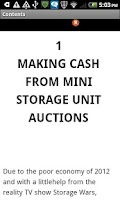 Screenshot of Storage Auction Cash