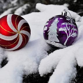 by Albina Jasinskaite - Public Holidays Christmas
