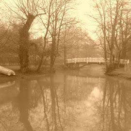 Sepia Oxford by Shona McQuilken - City,  Street & Park  Vistas ( reflection, sepia, oxford, trees, bridge, boat, river )