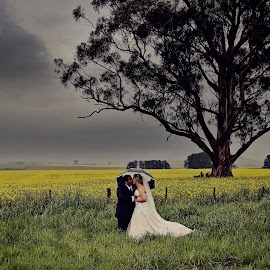 Field of Yellow by Alan Evans - Wedding Bride & Groom ( yellow flowers, wedding photography, canola, wedding day, wedding, aj photography, bride and groom,  )