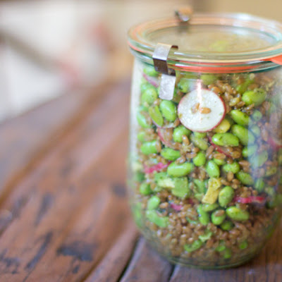 Farro Pesto Salad Recipe with Edamame, Avocado and Radishes