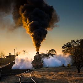 Dawn  by Richard Ryan - Transportation Trains ( dawn, railway, railways, steam train, steamer, rail lines,  )