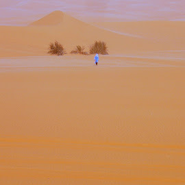 facing the desert by Isabella Scotti - Landscapes Deserts (  )