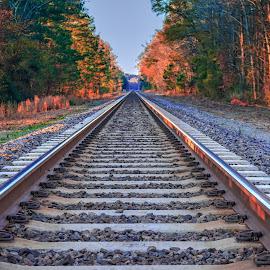 Eastover Tracks by Carol Plummer - Transportation Railway Tracks ( train, transportation, sunrise, tracks,  )