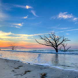 Botany bay sunrise wide view by R Jay Prusik - Landscapes Beaches ( edisto beach, tree, botany bay, ocean, edisto island, sunrise, south carolina )