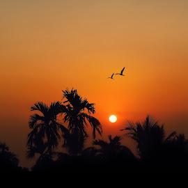 SUNSET by Rajib Kumar Bhattacharya - Landscapes Sunsets & Sunrises ( nature sunrise, sunset, sun )
