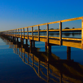 Lake Illawarra today by Colin Olive - Buildings & Architecture Bridges & Suspended Structures