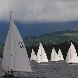 Sailing in Cumbria by David Hickes - Transportation Boats ( classic boats, cumbria, sailing, windermere, boats )