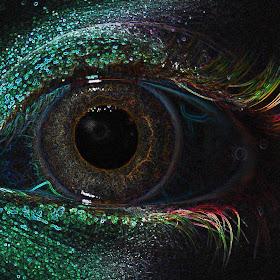 Kaitlyn's eye.jpg
