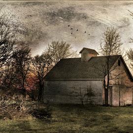 by John Smock - Novices Only Landscapes