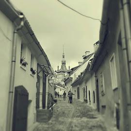 Tiny street by Aurel Garceava - Buildings & Architecture Homes ( houses, sighisoara, architecture )