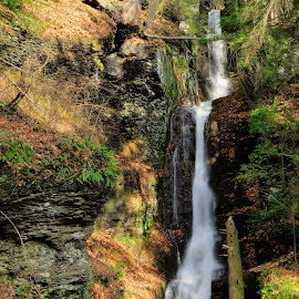 Silver Thread Falls by Jim Salvas - Landscapes Forests ( blurred, fall, waterfall, woodland, tall )