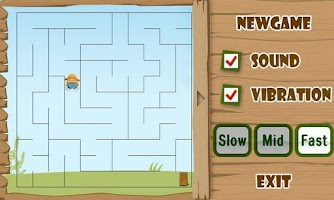 Screenshot of Maze Puzzle Deluxe