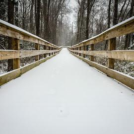 Snow by Lou Plummer - City,  Street & Park  City Parks ( photostream )