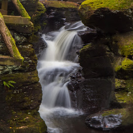 Bushkill Waterscape by Kalyan Peri - Nature Up Close Water ( canon, nature, waterscape, close up, slow shutter )