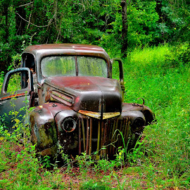 Ford Graveyard in Crawfordville by Richard Baas - Transportation Other ( old, richard baas, graveyard, aged, trucks, north florida, florida, crawfordville, rusted, d300, baas, nikon, rust, ford, aging, decay )