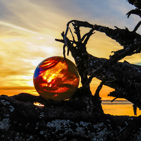 Orange Glow at Sunset by Vonelle Swanson - Artistic Objects Glass ( water, glass float, oregon, spray, logs, waves, pacific ocean )