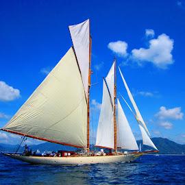 Schooner Sunshine by Ilse Gibson - Transportation Boats ( sailing yacht, superyacht, luxury yacht, thailand, luxury sailing, sunshine, schooner )