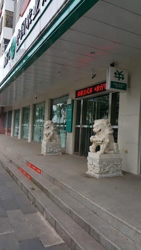 龙昆南的农行狮子兄弟