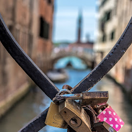 Locks of love by Vibeke Friis - Artistic Objects Other Objects ( railing, locks, venice, padlocks, canal )